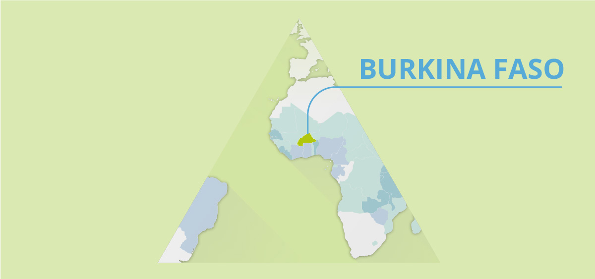 Country snapshot: BURKINA FASO
